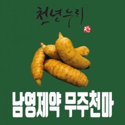 [남영제약]무주천마 발효진골드 [3개월분] 생생브로콜리즙 증정이벤트!